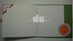 Dsci0203_copy